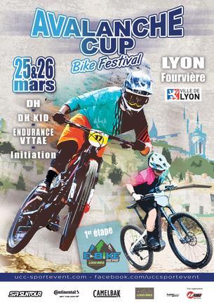 Affiche MEGAVALANCHE France - 24/26 March 2017