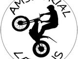 avatar AMSL Trial Levens