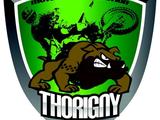 avatar MCI Thorigny