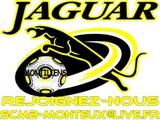 avatar Sporting Monteux